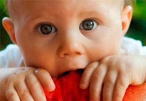 Formation Micronutrition périnatale - l'enfant